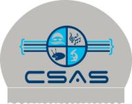 1x 2014 CSAS Silicone Cap