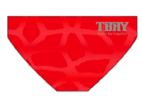 TBAY Arena Carbonite 3 Spider-Red Brief